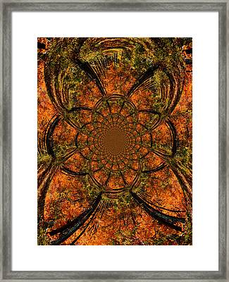 Autumn Forest Framed Print by Dan Sproul