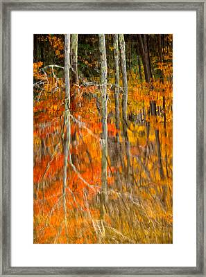 Autumn Forest Reflection Framed Print by Jeff Sinon