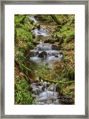 Autumn Forest Stream V2 Framed Print by Ian Mitchell