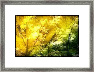 Autumn Glow Framed Print by Gun Legler