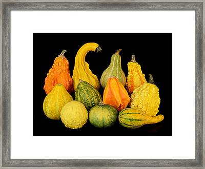 Autumn Harvest Gourds Framed Print by Jim Hughes