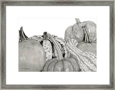 Autumn Harvest On White Framed Print by Sarah Batalka
