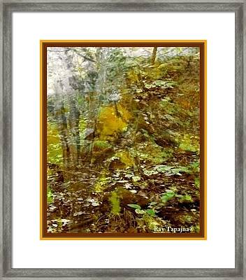 Autumn Impressions Framed Print by Ray Tapajna