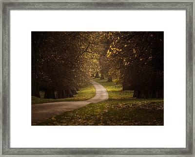 Autumn In Calke Abbey Framed Print by Chris Fletcher