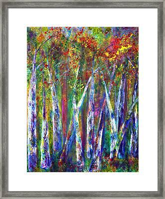 Autumn In Muskoka Framed Print by Claire Bull