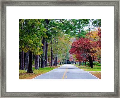 Autumn In The Air Framed Print by Cynthia Guinn