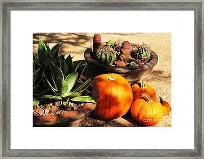 Autumn In The Desert Framed Print by Marilyn Smith