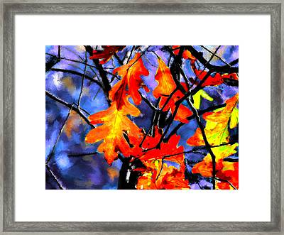 Autumn In The Evening Framed Print by Bruce Nutting