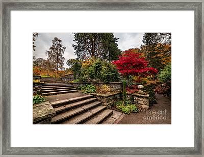 Autumn In The Garden Framed Print by Adrian Evans