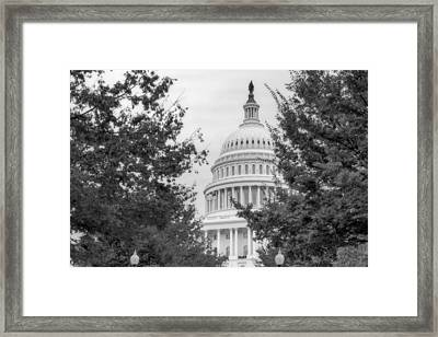 Autumn In The Us Capitol Bw Framed Print by Susan Candelario