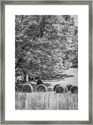 Autumn In West Virginia - Paint Bw Framed Print by Steve Harrington