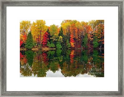 Autumn Kaleidoscope Framed Print by Terri Gostola