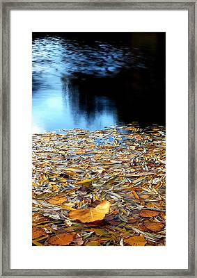 Autumn Lake Framed Print by Steven Milner