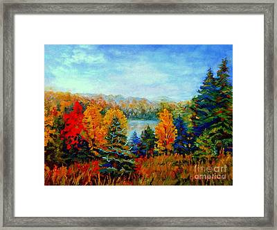 Autumn Landscape Quebec Red Maples And Blue Spruce Trees Framed Print by Carole Spandau