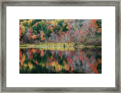 Autumn Landscape Reflections Framed Print by Bill Wakeley