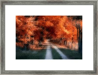 Autumn Lane Framed Print by Tom Mc Nemar