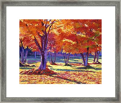 Autumn Leaves Framed Print by David Lloyd Glover
