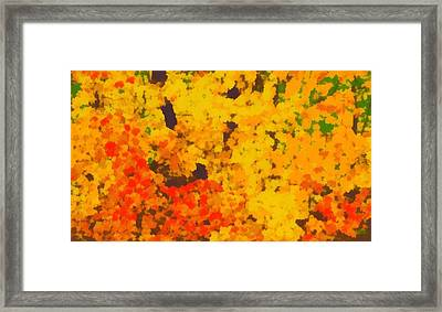 Autumn Leaves Pop Art Framed Print by Dan Sproul