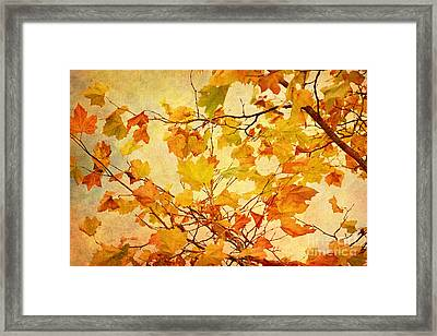 Autumn Leaves With Texture Effect Framed Print by Natalie Kinnear