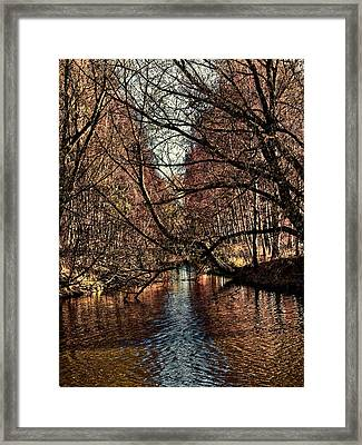 Autumn Light By Leif Sohlman Framed Print by Leif Sohlman