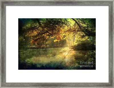 Autumn Light Framed Print by Ellen Cotton