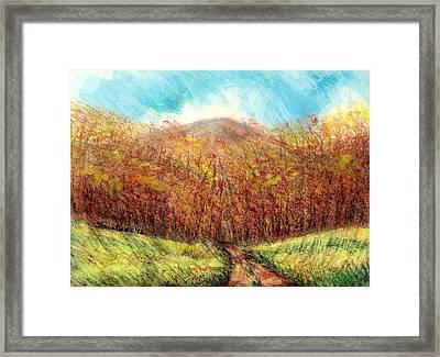 Autumn Meadow Framed Print by Shana Rowe Jackson