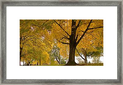 Autumn Memories Framed Print by Beverly Guilliams