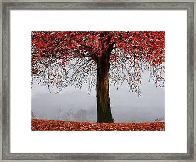 Autumn Mist Framed Print by James Shepherd