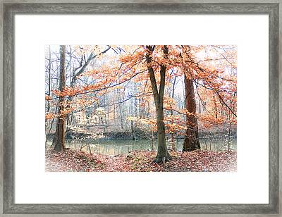 Autumn Mist Framed Print by Lorna Rogers Photography