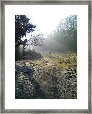Autumn Morning  Framed Print by David Stribbling