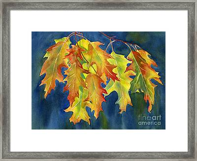 Autumn Oak Leaves  On Dark Blue Background Framed Print by Sharon Freeman