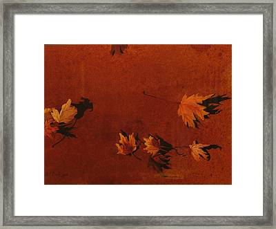 Autumn Offering Framed Print by Carole Poole