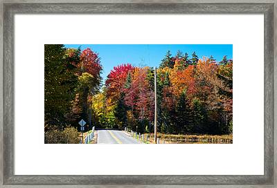 Autumn On Rondaxe Road Framed Print by David Patterson