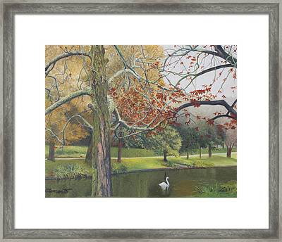 Autumn On Town Pond Framed Print by Barbara Barber
