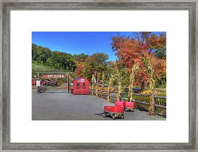 Autumn Orchard Framed Print by Joann Vitali