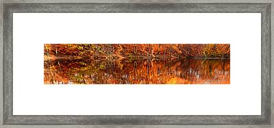 Autumn Paradise Framed Print by Lourry Legarde