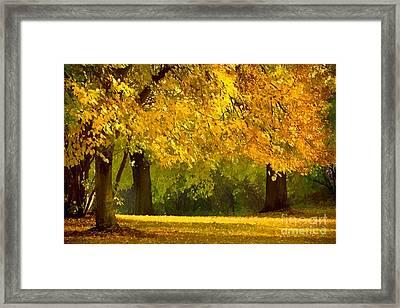 Autumn Park Graphical Framed Print by Lutz Baar
