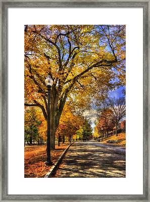 Autumn Path - Boston Public Garden Framed Print by Joann Vitali