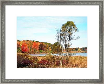 Autumn Pond Framed Print by Aimee L Maher Photography and Art Visit ALMGallerydotcom