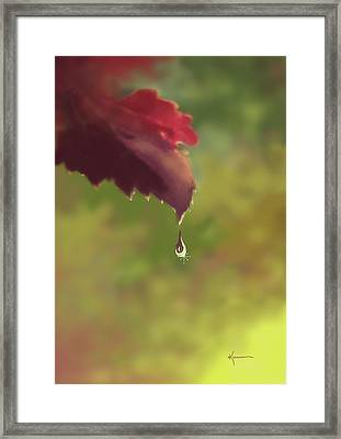 Autumn Rain Framed Print by Kume Bryant