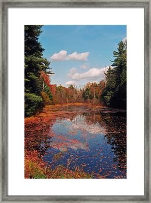 Autumn Reflections Framed Print by Joann Vitali