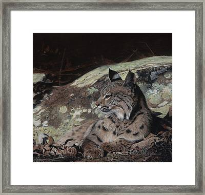 Autumn Rest Framed Print by Pat Gilmore