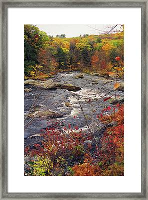 Autumn River Framed Print by Joann Vitali