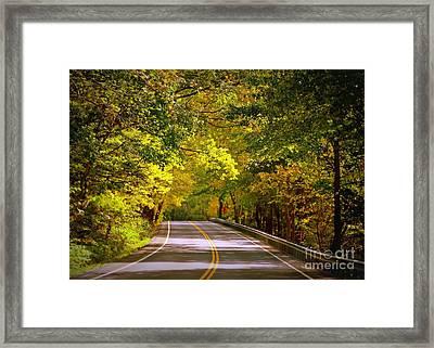 Autumn Road Framed Print by Carol Groenen