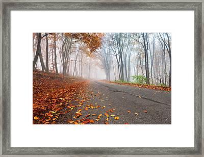 Autumn Road Framed Print by Evgeni Dinev
