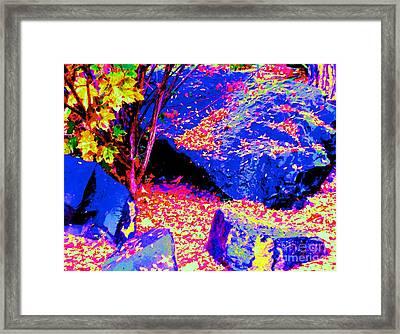 Autumn Rocks Framed Print by Ann Johndro-Collins