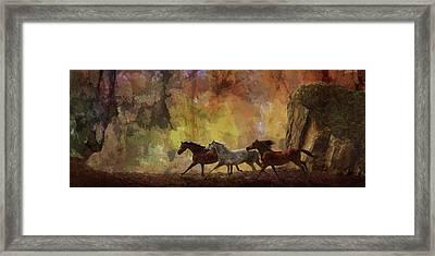 Autumn Run Framed Print by Melinda Hughes-Berland