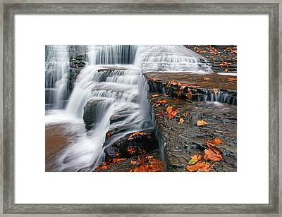 Autumn Rush Framed Print by David Simons