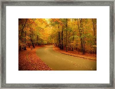 Autumn Serenity - Holmdel Park  Framed Print by Angie Tirado