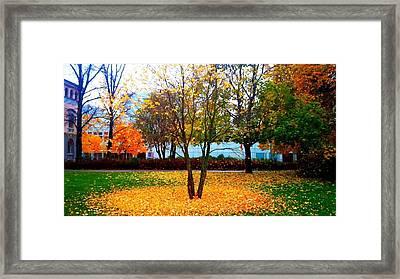 Autumn Series 1.1 Framed Print by Derya  Aktas